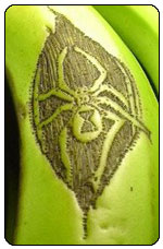 Tattooed Banana